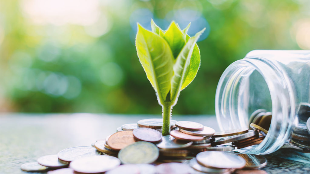 sustainable development and finance